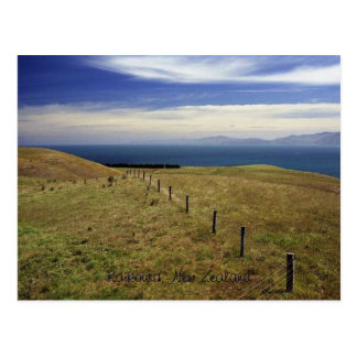 Kaikoura, New Zealand Postcard
