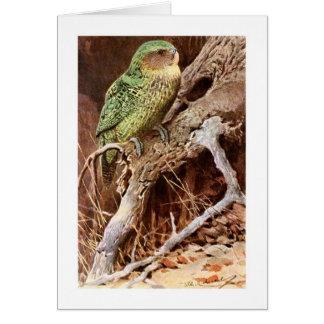 Kakapo Card