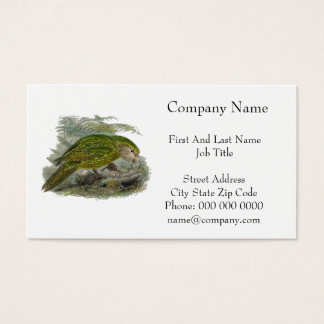 Kakapo Green Parrot Vintage Illustration Business Card