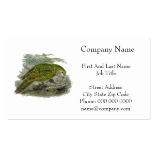 Kakapo Green Parrot Vintage Illustration Double-Sided Standard Business Cards (Pack Of 100)