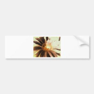 Kaktus Flower Bumper Sticker