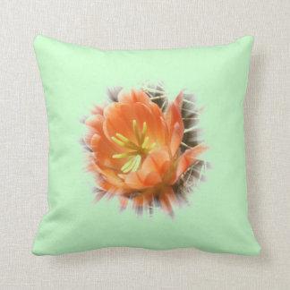 Kaktusblüte Echinopsis cushion