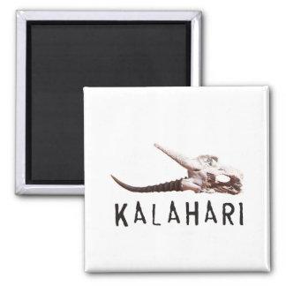 Kalahari desert in Africa: Dead antelope skull 2 Inch Square Magnet