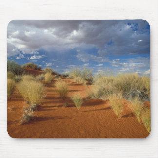 Kalahari Desert Scene, Kgalagadi Transfrontier 2 Mouse Pads