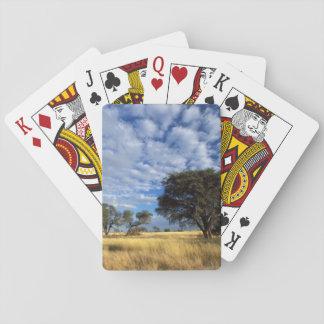 Kalahari Desert Scene, Kgalagadi Transfrontier Playing Cards