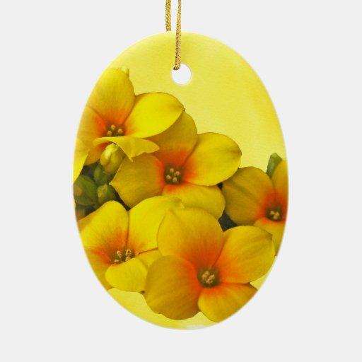 Kalanchoe amarillo - sol suculenta ornaments para arbol de navidad