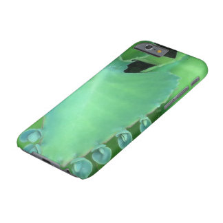 Kalanchoe Barely There iPhone 6 Case