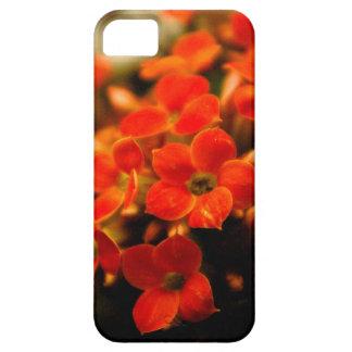 Kalanchoe flowers bouquet iPhone5 case