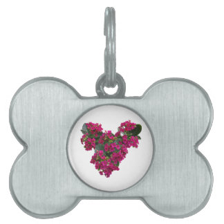 Kalanchoe Heart Pet Name Tag