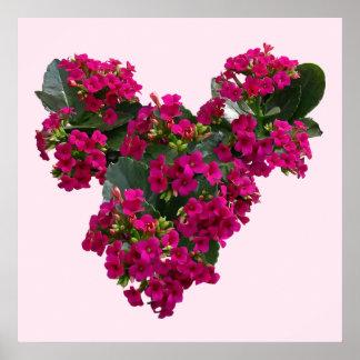 Kalanchoe Heart Poster