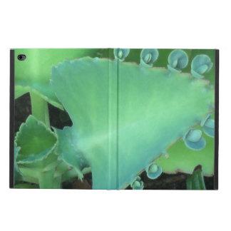 Kalanchoe Powis iPad Air 2 Case