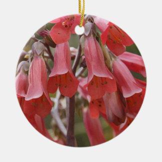 Kalanchoe Tubiflora Ceramic Ornament