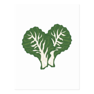 Kale Leaves Post Cards