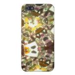 Kaleidescope Bejeweled 22 iPhone 5 Cárcasas