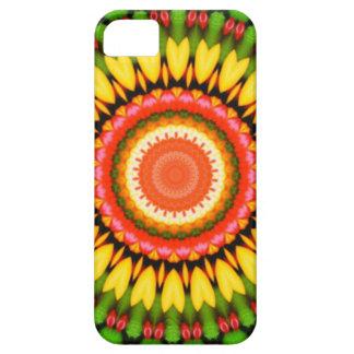 Kaleidoscope Beauty iPhone 5 Cases