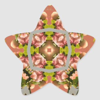 Kaleidoscope Collection Star Sticker