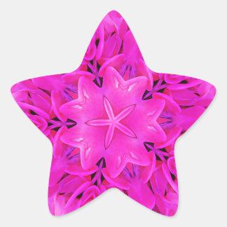 Kaleidoscope Design Hot Pink Floral Art Star Sticker