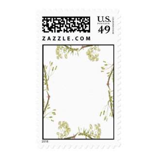 Kaleidoscope design made with flower stems postage stamps