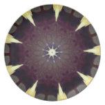 kaleidoscope plate