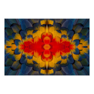 Kaleidoscope Scarlet Macaw feather Poster