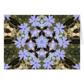 Kaleidoscopic Phlox Card