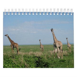 Calendar giraffe