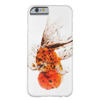Kaliko lionhead Goldfisch (Carassius auratus). Barely There iPhone 6 Case