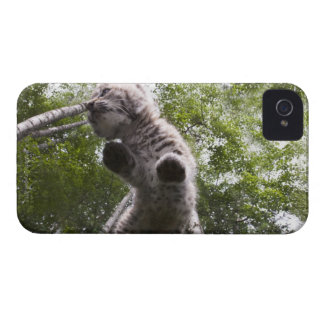 kalispell, montana, united states of america iPhone 4 Case-Mate case