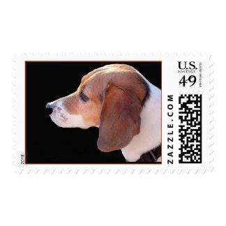 Kalli Girl Postage Stamp