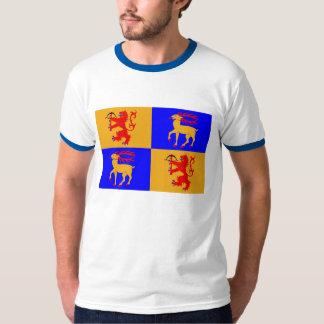 Kalmar län flag T-Shirt