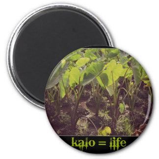 Kalo = Life Magnet