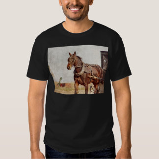 Kalona, Iowa Amish Horse and Buggy T-shirt