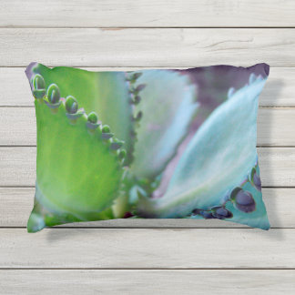 Kalonchoe Colors Outdoor Pillow