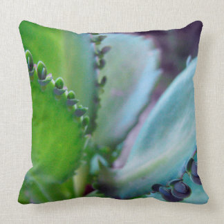 Kalonchoe Colors Throw Pillow