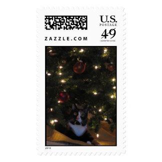 Kaly_xmas2005 Stamps