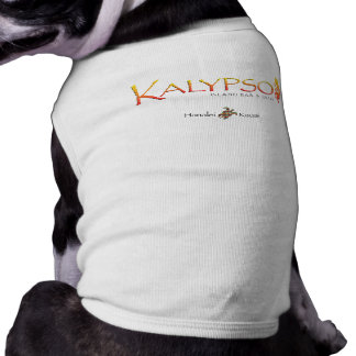 Kalypso Colorful Logo With Rainbow Sea Turtle Tee