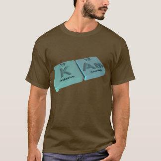 kam as Potassium K and Americium Am T-Shirt