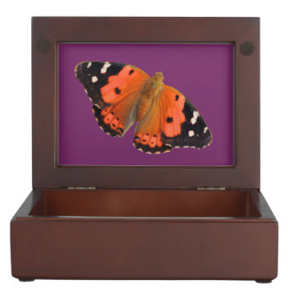 Kamehameha butterfly design jewelry box
