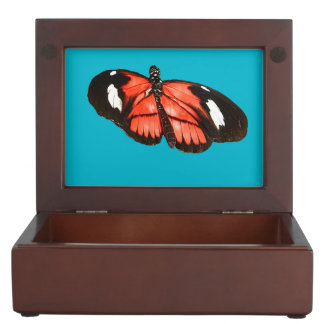 Kamehmeha butterfly design jewelry box
