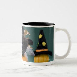 Kanagawa, Honshu, Japan Two-Tone Coffee Mug