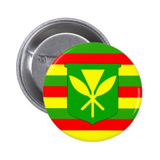Kanaka Maoli Flag Pinback Button