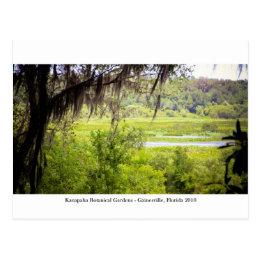 Kanapaha Gardens - Gainesville 012 Postcard