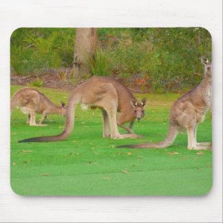 kanga mouse pad