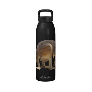 Kanga Reusable Water Bottle