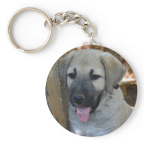 Kangal - Anatolian Sheep Dog Keychain