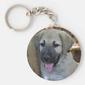 Kangal - Anatolian Sheep Dog Keychain