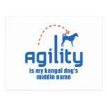 Kangal Dog Postcard