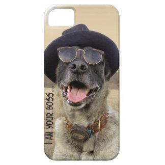 kangal dog with hat and eyeglasses iPhone 5 case