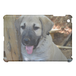 Kangal iPad Mini Cases