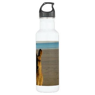 Kangaroo 24oz Water Bottle